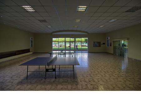 Salón ping-pong